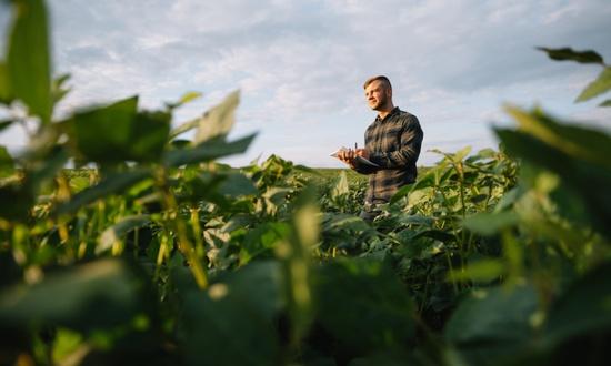Агроэколог, сельскохозяйственный эколог