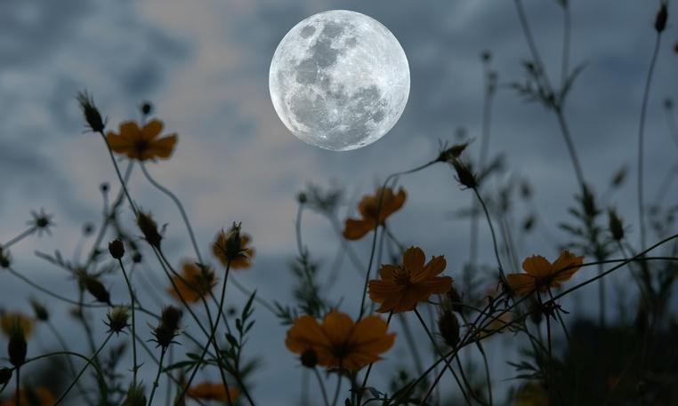 Российские ученые завершили эксперимент по имитации полета на Луну