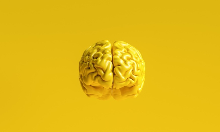 Создан искусственный аналог мыслящего мозга человека